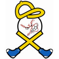 Blue Sox Baseball